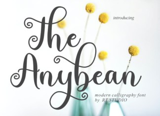 The Anybean Font