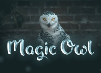 Magic Owl Font