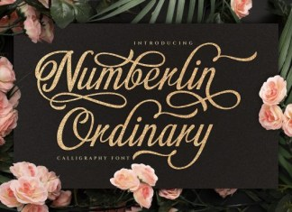 Numberlin Ordinary Font