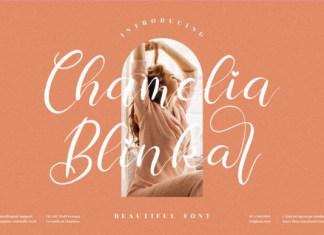 Chamelia Blinkar Font
