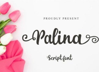 Palina Font