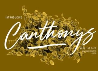 Canthonys Font