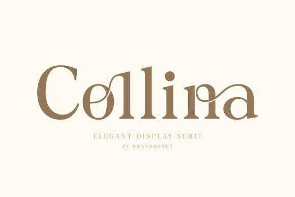 Collina Font