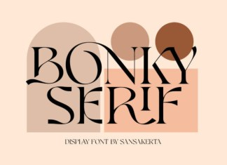 Bonky Serif Font