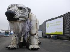 Bienvenue polar bear!