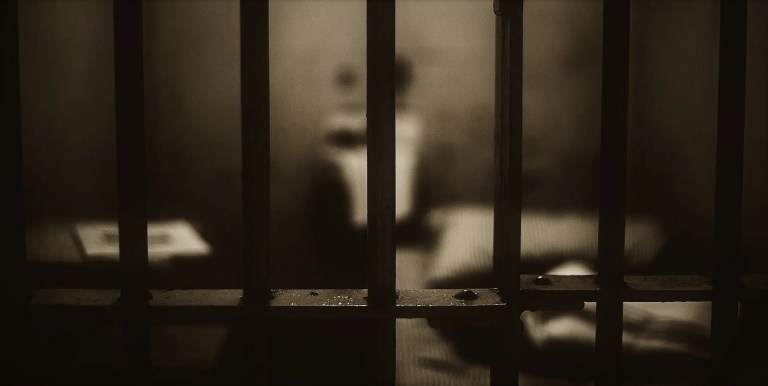 Bars or Woman in a Cage ~ Part Three