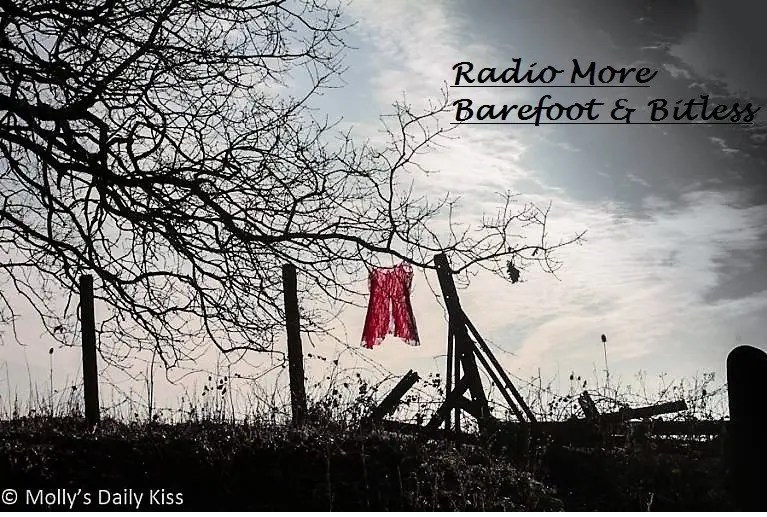 Radio More ~ Barefoot and Bitless