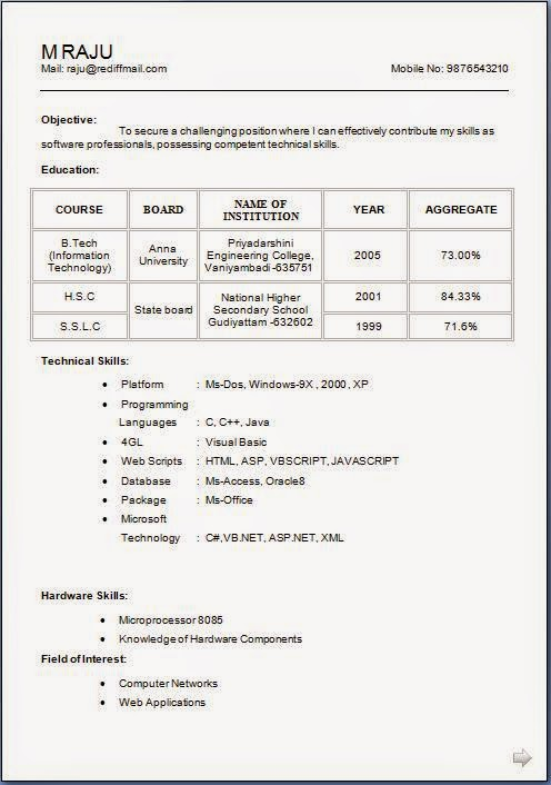 Matrimonial Resume Format Doc  1000 images about biodata for
