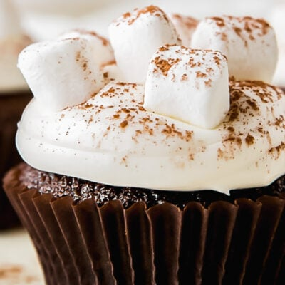 marshmallow frosting with mini marshmallows and dusting of cocoa powder on chocolate cupcake