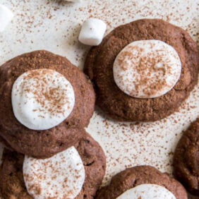 chocolate hot cocoa cookies topped with a marshmallow half and dusted with cocoa