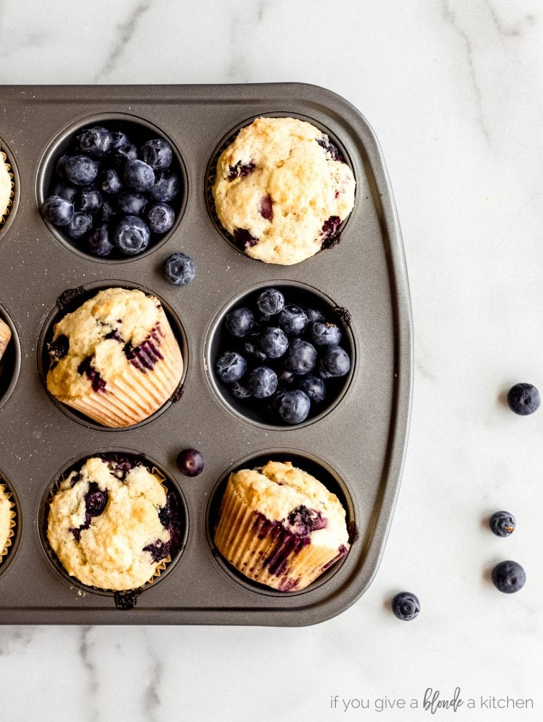 fresh blueberries and blueberry muffins in muffin tin
