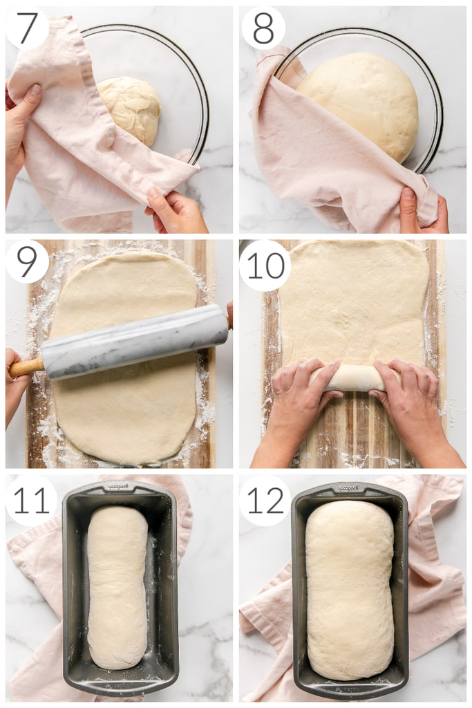 step by step photos how to make sandwich bread dough rising in bowl and loaf pan