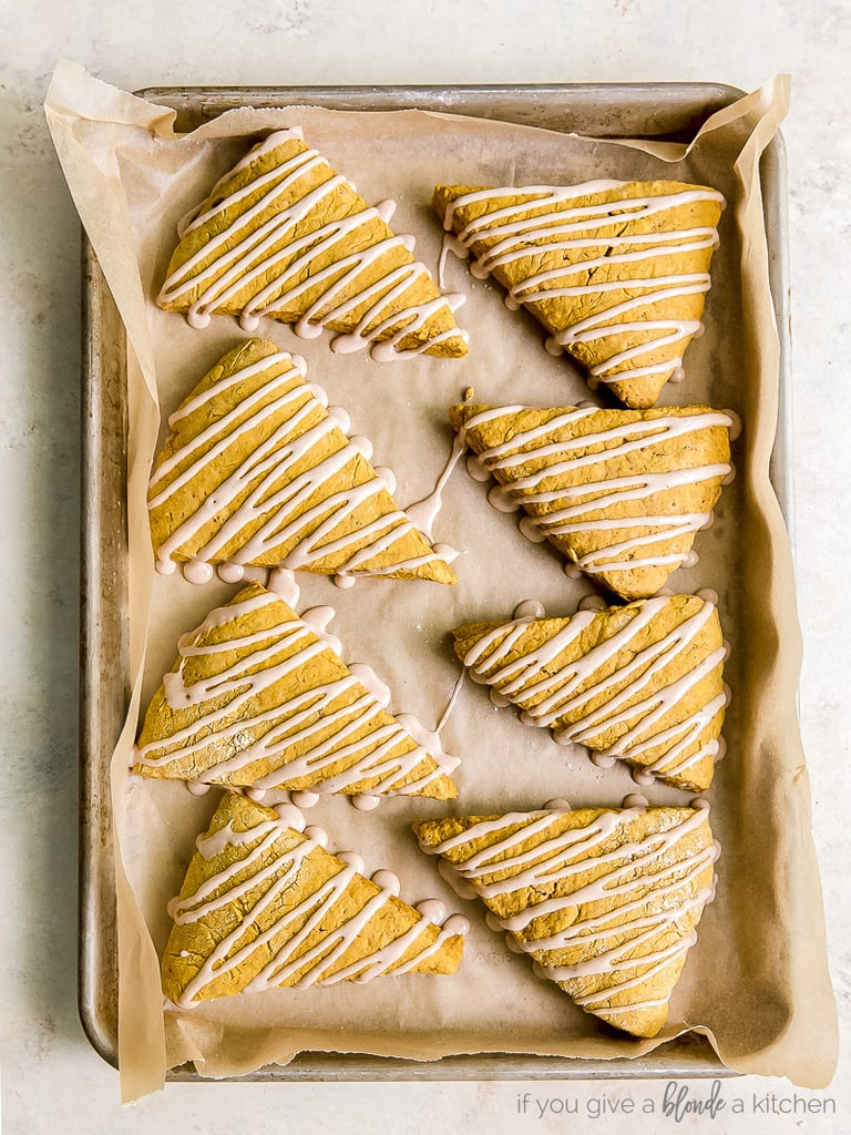 eight pumpkin scones with drizzle on parchment paper on baking sheet
