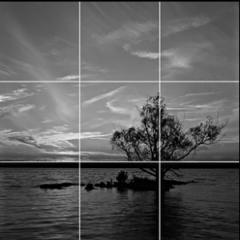 Bildkomposition mit der Drittelregel