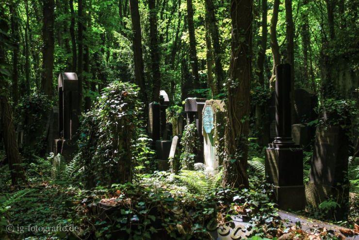 Fotolocation Friedhof Weissensee