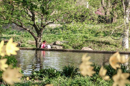 Ruckzug im Stadtpark - Fototipps für den Sommer
