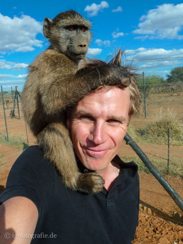 Wildlife-Volunteering-Namibia-71