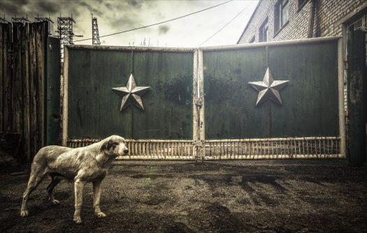 tschernobyl-foto-expedition