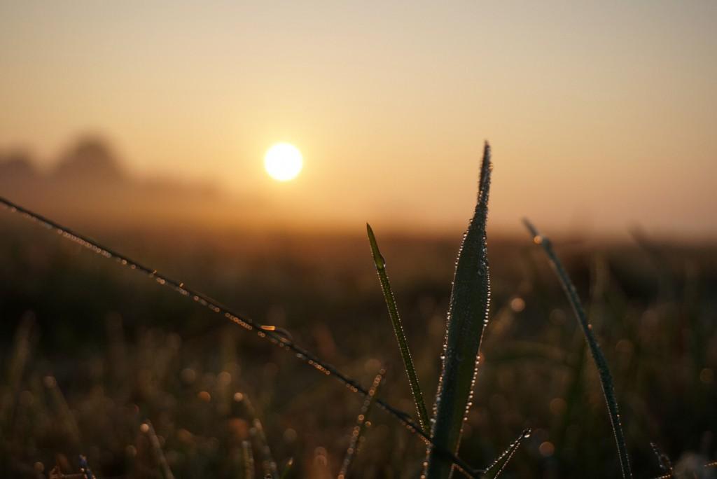 Sonnenaufgang-fotografieren-Tipps-Silhouette