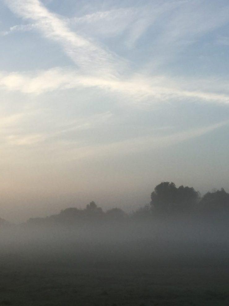 herbst-fotografieren-tipps-nebel-1