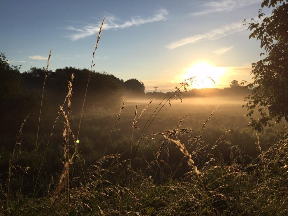 landschaftsfotografie-smartphone