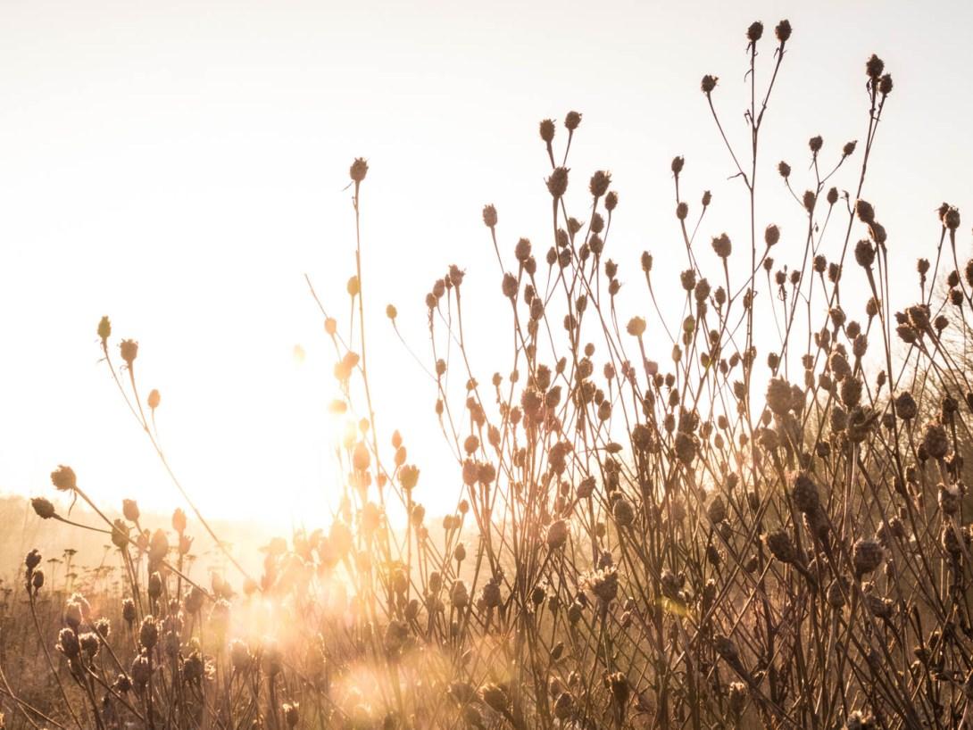 landschaftsfotografie-tipps-21