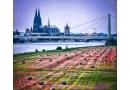 Heinz-Peter Schepp: Fotograf