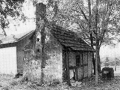 imgremberg3backhaus1968.jpg