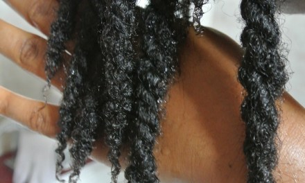 Pros and Cons of Washing Natural Hair in Twists