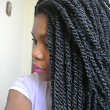 dsc_7355 Protective Hairstyles