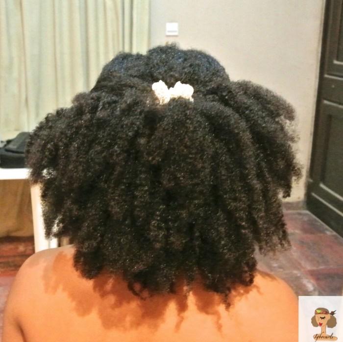 dsc_8646 At Home Hair Spa