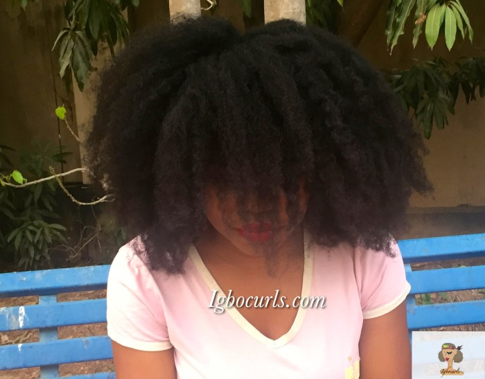 img_1996 How To Get A Soft Voluminous 'Fro aka Heatless Blowout