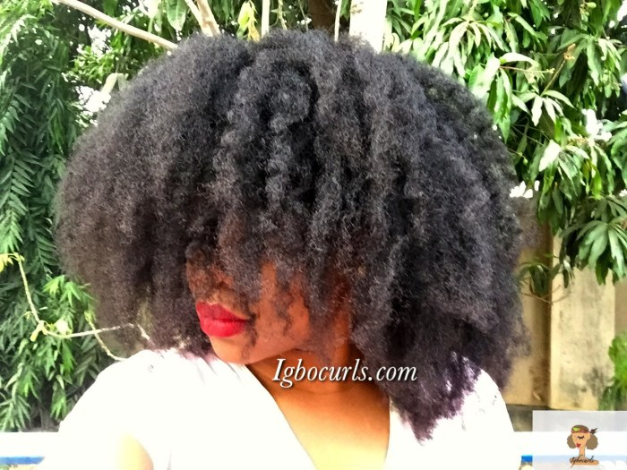 img_2005 How To Get A Soft Voluminous 'Fro aka Heatless Blowout