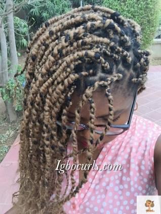 img_2460 Current Hair Situation- DIY KINKY TWISTS + VIDEO