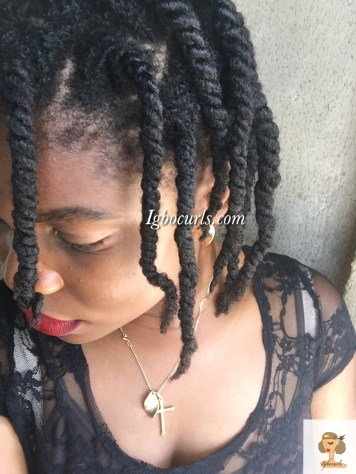 img_3673 Product Review- Camille Rose Naturals Almond Jai Twisting Butter