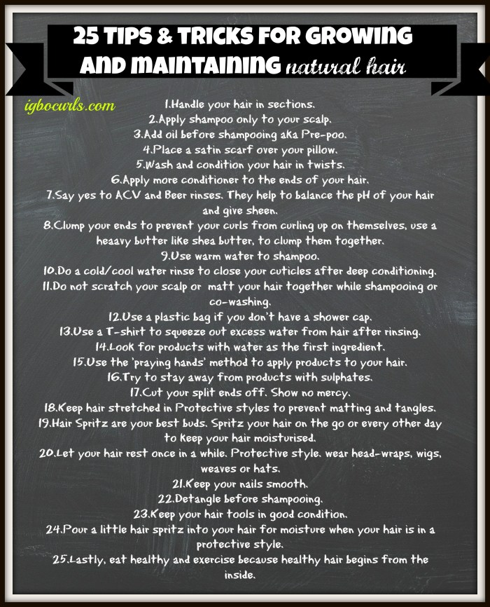 25-tips-tricks 25 Tips & Tricks for Growing and Maintaining Natural Hair