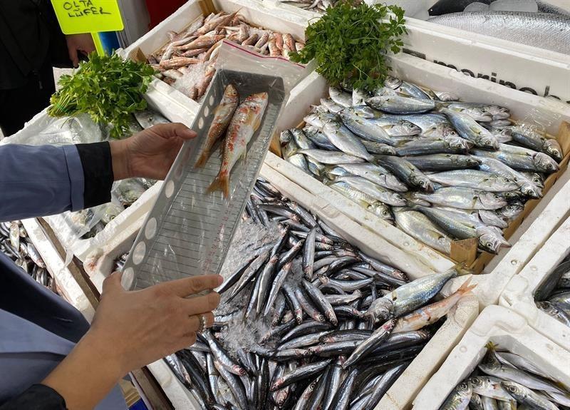 Iğdır'da perakende balık satışı yapan yerler denetlendi