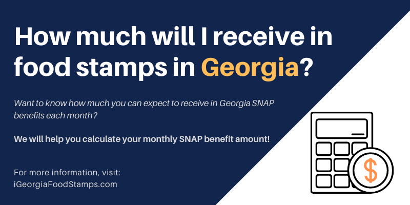 How much will I receive in food stamps in Georgia?
