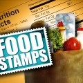"""Georgia food stamps list"""