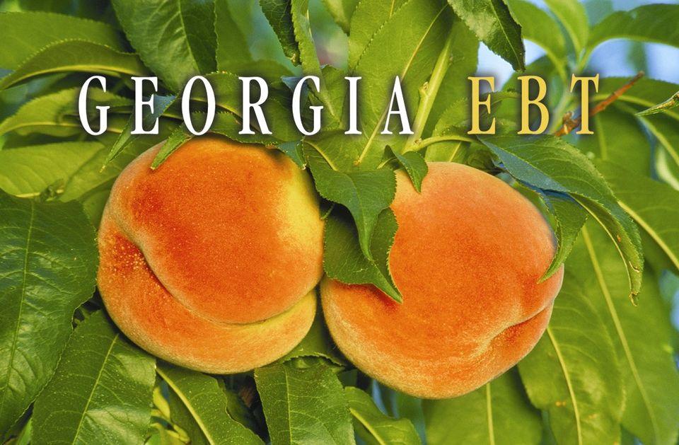 Georgia Food Stamps Renew