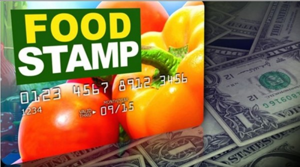 """How to Report Food Stamp Fraud in Georgia"""