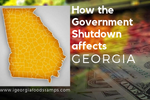 How Georgia is affected by the Government Shutdown