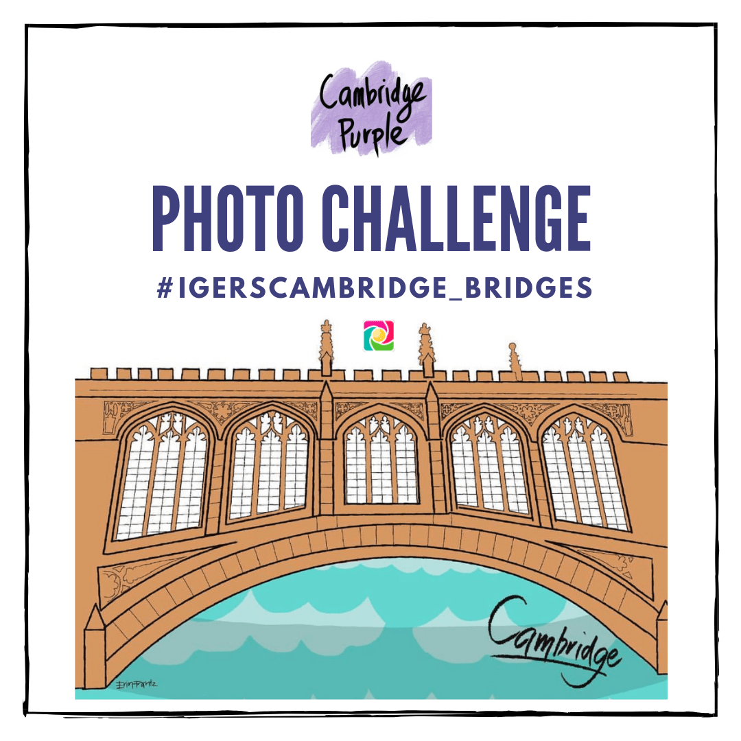 igerscambridge-bridges-cambridgepurple-photo-challenge-cambeidge