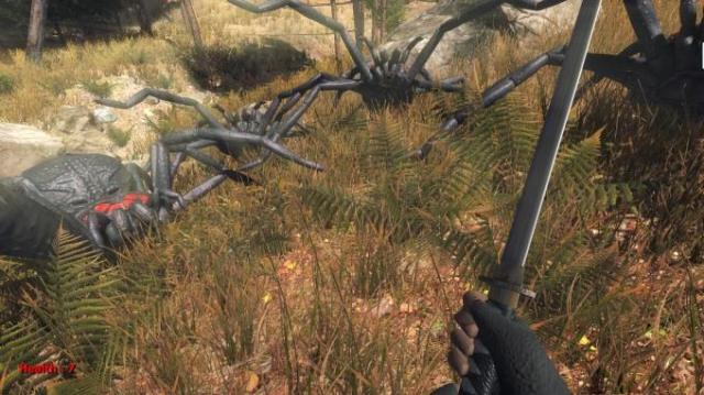 Forest spiders Torrent Download
