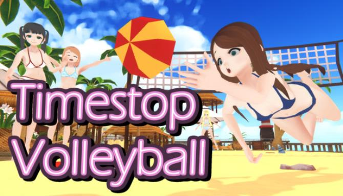 Timestop Volleyball Free Download