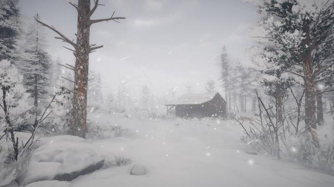 Northern Lights Torrent Download