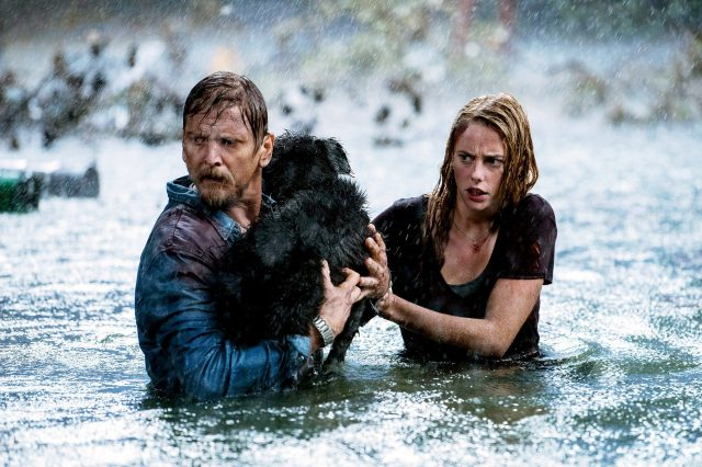 climate-change-in-horror-movies-gq-2019-070819-9743190