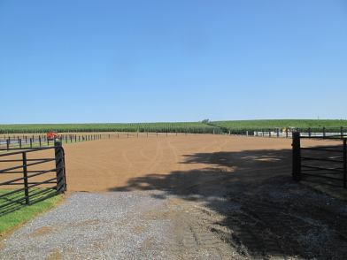 Footing for an outdoor arena
