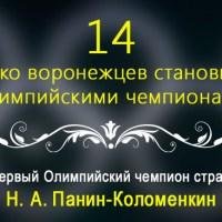 «Воронежская цифирь». Город в цифрах и фактах