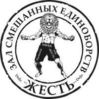 """Немного о """"ЖЕСТИ"""". Клуб Dojo """"ЖЕСТЬ"""" ММА."""